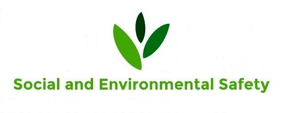 """Логотип общественной организации """"Социальная и экологическая безопасность"""""""